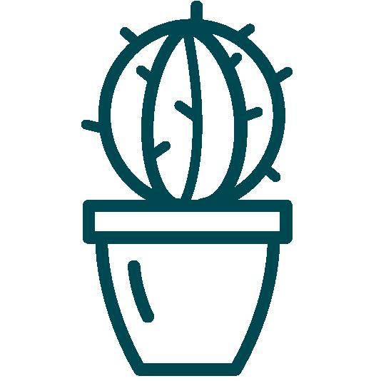 Icons Petrol_Cactus
